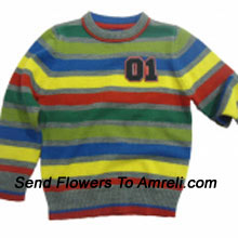 """productA Sweater For Your Champ. (You Can Mention Size Required/Age Of Kid In The """"Special Request To Florist"""" Column Which Will Appear During The Shopping Process)"""