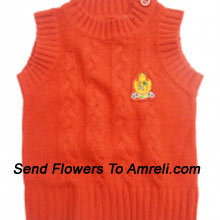 "productA Sweater For Your Baby To Keep Them Warm (You Can Mention Size Required/Age Of Kid In The ""Special Request To Florist"" Column Which Will Appear During The Shopping Process)"
