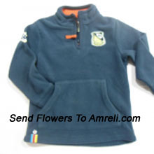 "productA Sweat Shirt For Your Boy. (You Can Mention Size Required/Age Of Kid In The ""Special Request To Florist"" Column Which Will Appear During The Shopping Process)"