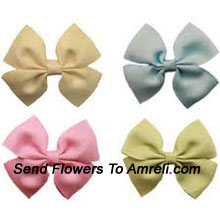 product2 Pairs Of Different Colored Hair Clips