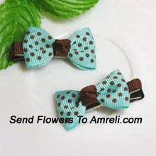A Pair Of Designer Bow Shaped Hair Clips