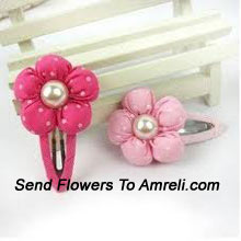A Cute Pair Of Flower Shaped Hair Clips