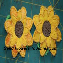 Pair Of Cute Flower Shaped Hair Clips