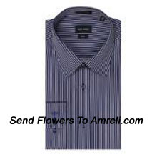 "productPark Avenue Mens Leisure Collection Full Sleeves Formal Stripes Shirt.. (You Can Mention Size Required In The ""Special Request To Florist"" Column Which Will Appear During The Shopping Process Otherwise Standard Size Shirt ""40"" Will Be Delivered.)"