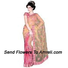 productLook Sensationally Awesome In This Net Saree