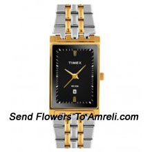 productA Designer Timex Wrist Watch. This Gives A Casual And Formal Look To Your Wrist