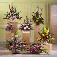 product6 Different Arrangements Of Assorted Flowers