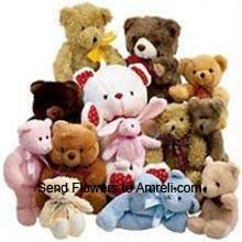 12 Different Teddy Bears Including One 3 Feet Tall Teddy Bear, Four 1.5 Feet Teddy Bears, Four Medium Size Teddy Bear And Three Small Teddy Bears ( Please Note That We Reserve The Right To Substitute Any Product With A Suitable Product Of Equal Value In Case Of Non Availability Of A Certain Product )