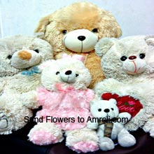 productOne 4 Feet Tall Teddy Bear, Two 1.5 Feet Teddy Bears, One Medium Size Teddy Bear, One Small Teddy Bear And One Heart ( Please Note That We Reserve The Right To Substitute Any Product With A Suitable Product Of Equal Value In Case Of Non Availability Of A Certain Product)