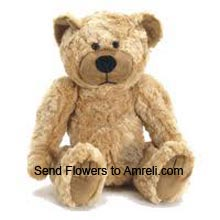 productMedium Size Teddy Bear (  Please Note That We Reserve The Right To Substitute Any Product With A Suitable Product Of Equal Value In Case Of Non Availability Of A Certain Product)