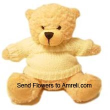productA Medium Size Cute Teddy Bear ( Please Note That We Reserve The Right To Substitute Any Product With A Suitable Product Of Equal Value In Case Of Non Availability Of A Certain Product)