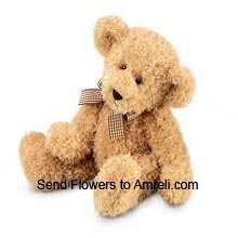 productA Small Size Cute Teddy Bear (  Please Note That We Reserve The Right To Substitute Any Product With A Suitable Product Of Equal Value In Case Of Non Availability Of A Certain Product)