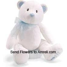 productMedium Size Cute Teddy Bear (  Please Note That We Reserve The Right To Substitute Any Product With A Suitable Product Of Equal Value In Case Of Non Availability Of A Certain Product)