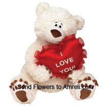 productMedium Size Teddy Bear With A Heart (  Please Note That We Reserve The Right To Substitute Any Product With A Suitable Product Of Equal Value In Case Of Non Availability Of A Certain Product)