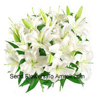 productBunch Of White Colored Lilies