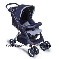 productEconomical Baby Stroller