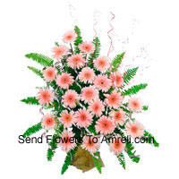 Basket Of 24 Pink Colored Gerberas