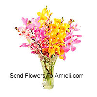 Mixed Colored Orchids In A Vase