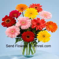 12 Mixed Colored Gerberas In A Vase