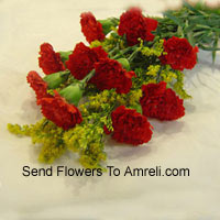 Bunch Of 10 Red Carnations