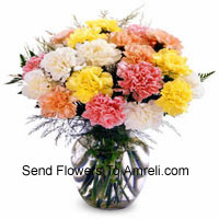 12 Mixed Colored Carnations In A Vase