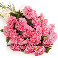 Bunch Of 24 Pink Carnations