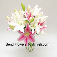 Mixed Colored Lilies In A Vase
