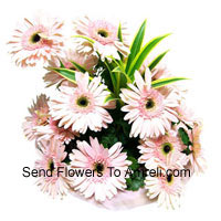 Basket Of 15 Pink Colored Gerberas