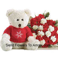 Bunch Of 24 Red And White Carnations With A Medium Sized Cute Teddy Bear