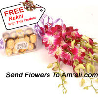 productBunch Of Orchids With 16 Pcs Ferrero Rocher And A Free Rakhi
