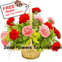 productBasket Of 6 Pink And 6 Red Carnations With A Free Rakhi