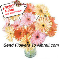 24 Mixed Colored Gerberas In A Vase With A Free Rakhi