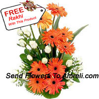 productBasket Of White Roses And Gerberas With A Free Rakhi