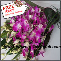 productBunch Of Orchids With Seasonal Fillers And A Free Rakhi